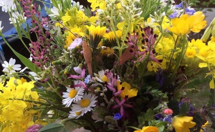 33 Wildflowers